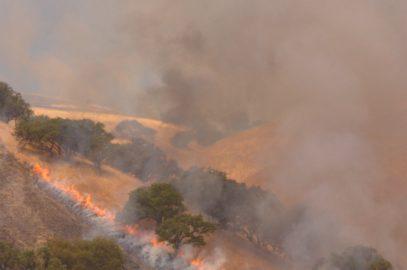Controlled Burn of a hillside in the California Coastal Range